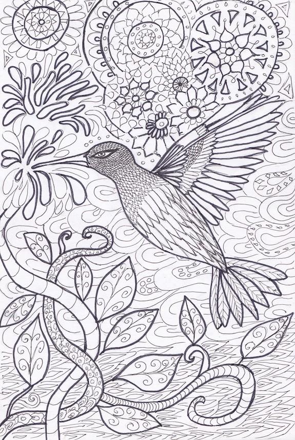 kolibri small